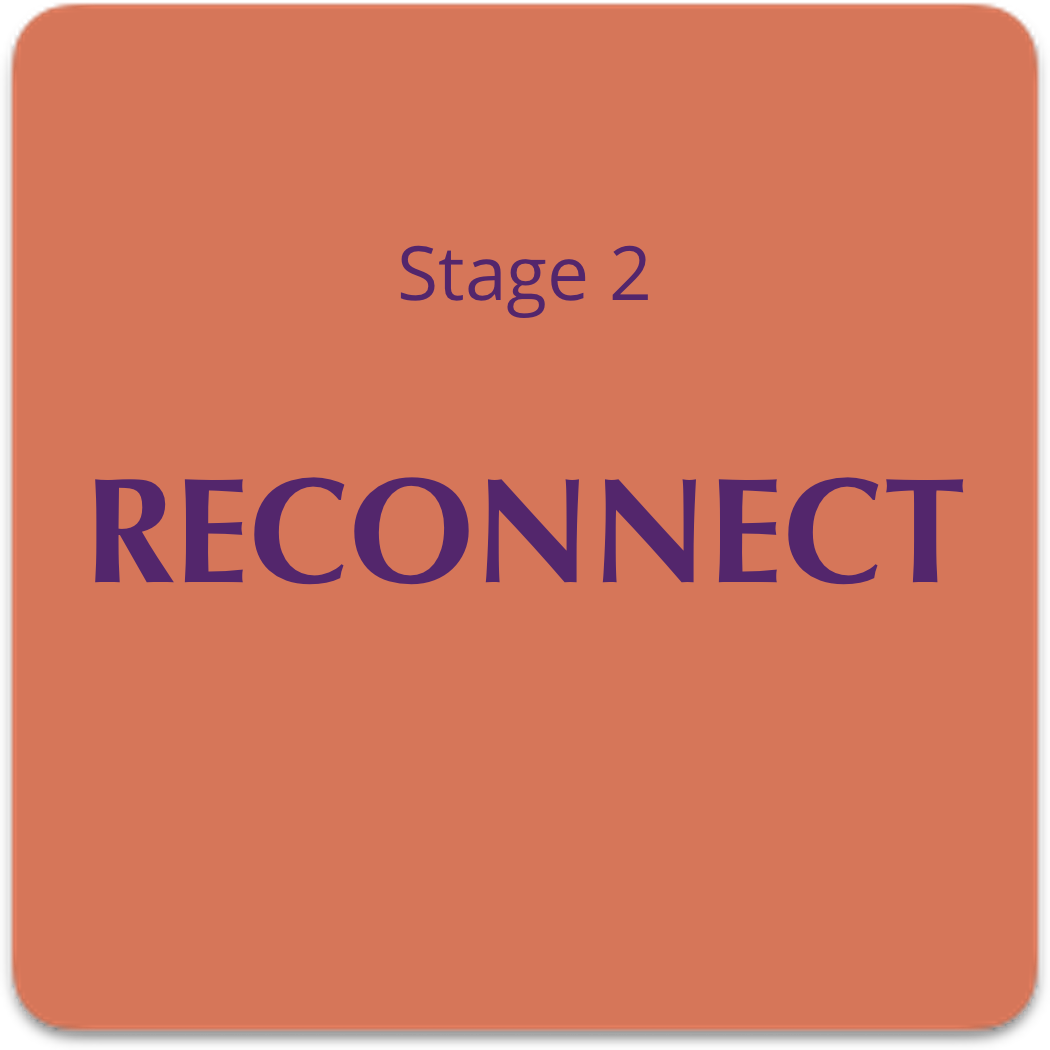 reconnect-lg