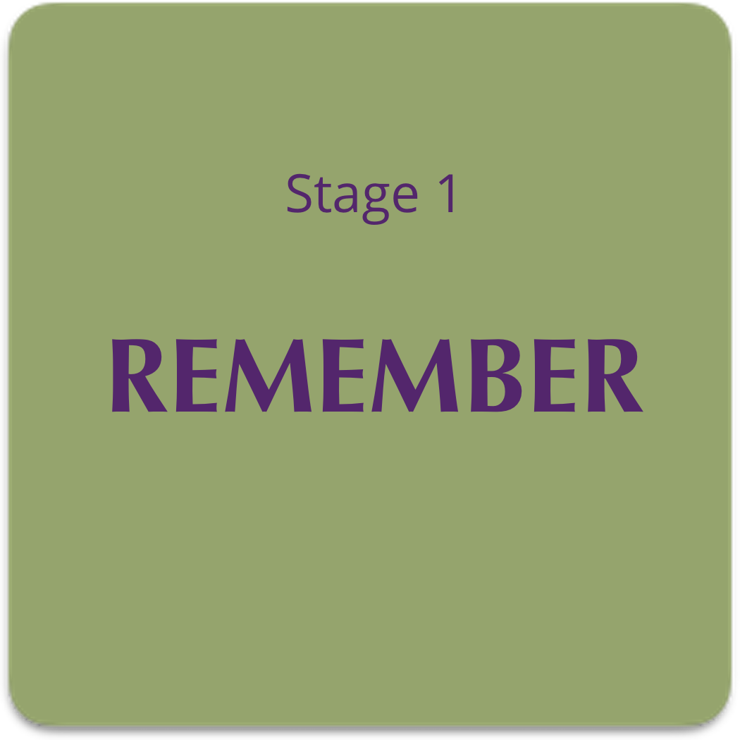 remember-lg
