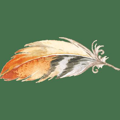 Rebirth-Feather-72sqsm
