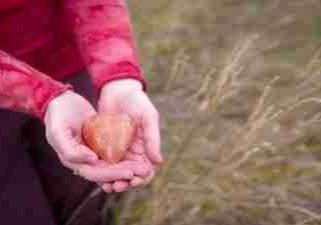 Hands Holding Heart 92sm